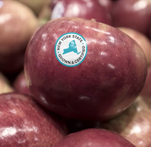 A red apple adorned with the New York State Grown & Certified blue and white seal.